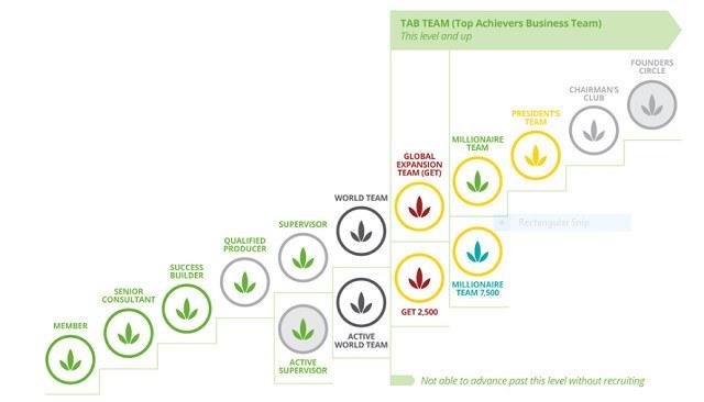 Herbalife Distributor Performance Levels