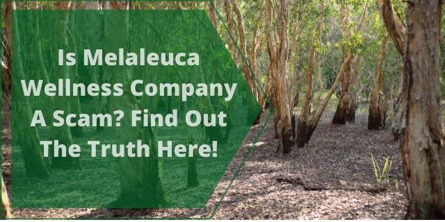 Is Melaleuca Wellness Company A Scam?